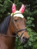 ''Combi Brite'' Fly Mask with ears