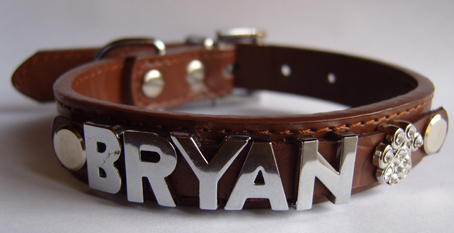 Personalised Dog Collar with Chrome Letters